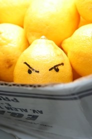 Rss and Mailing List Updates - Evil lemon