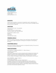 Geoffrey Adler beautiful resume