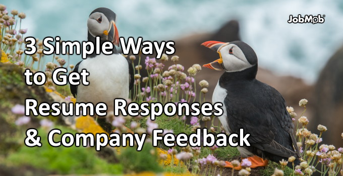 📣 3 Simple Ways to Get Resume Responses & Company Feedback