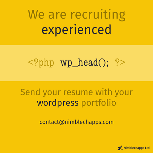nimblechapps programmer 1 talent recruitment marketing