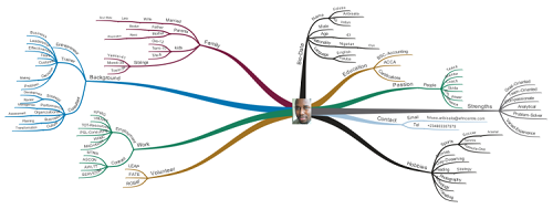 Foluso Aribisala cv mind map