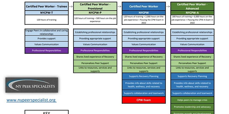 Education and Career Pathways for Peers
